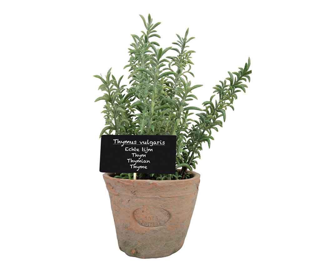 Umělá rostlina v květináči Thyme Grande