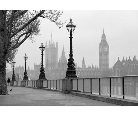 London Fog Tapéta 254x366 cm
