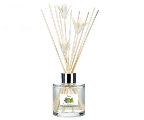 Difuzor eteričnih olj Elegance Mint and Eucalyptus 100 ml