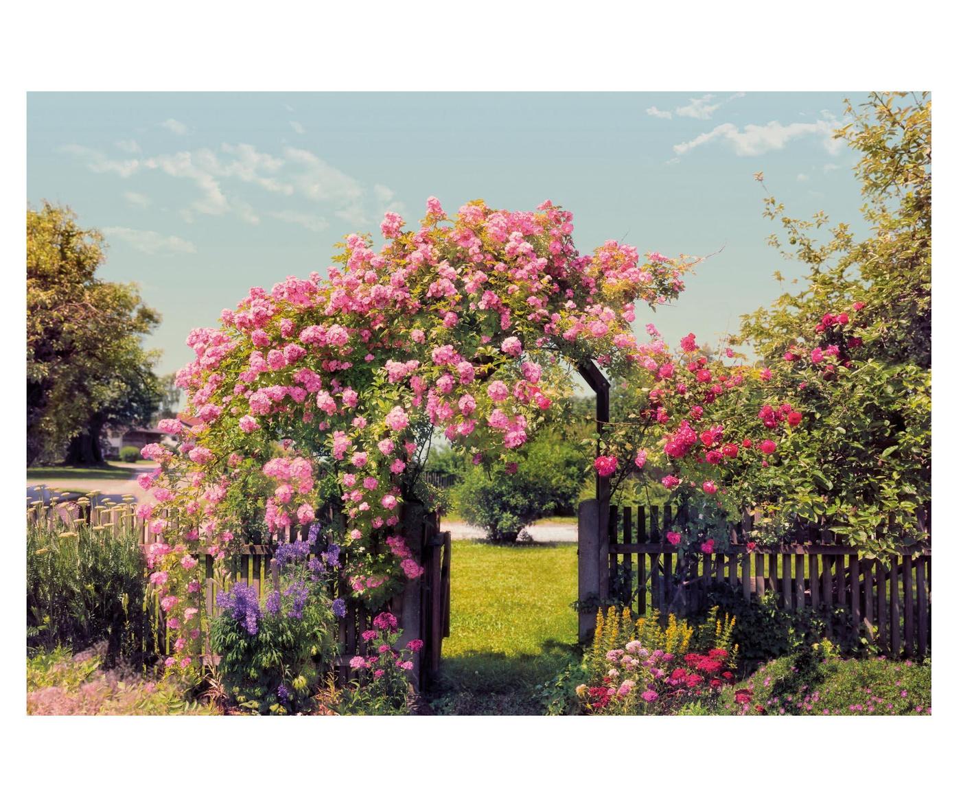 Rose Garden Fotótapéta 254x368 cm