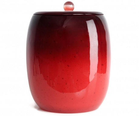 Cos de gunoi cu capac Stria Red 5 L