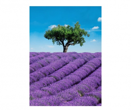 Provence Tapéta 183x254 cm