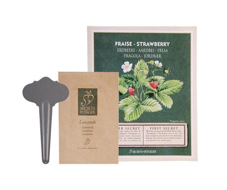 Paket sjemenki jagoda Growing Healty Strawberry