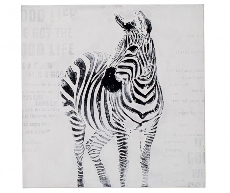 Zebra Kép 80x80 cm