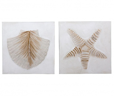 Set 2 slike Sea Shells 60x60 cm