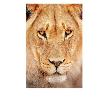 Картина Lion 80x120 см