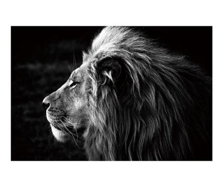 King Leon Kép 100x150 cm
