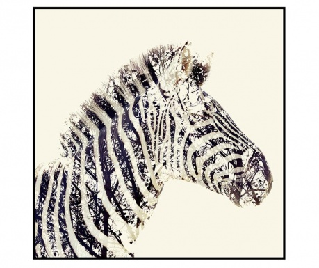 Картина Safari Zebra 80x80 см
