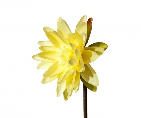 Изкуствено цвете Water Lily Yellow