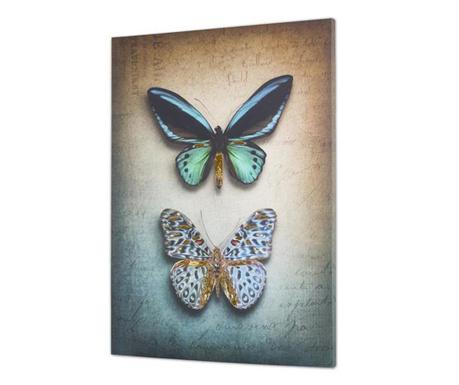 Obraz Butterflies 100x140 cm