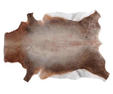 Blesbok Szőnyeg 75x100 cm