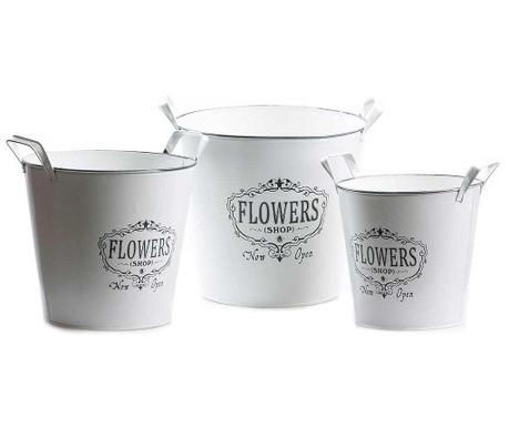 Set 3 ghivece Flowers Handles