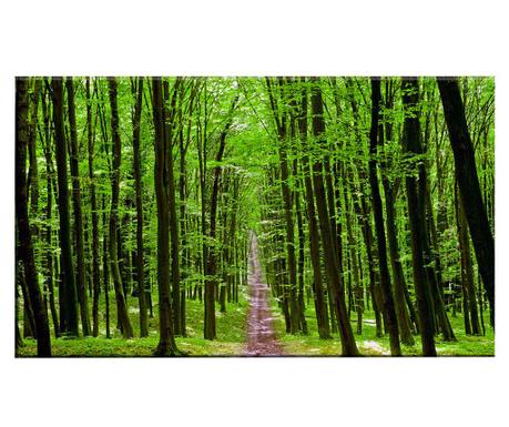 Slika Hidden Path 100x140 cm