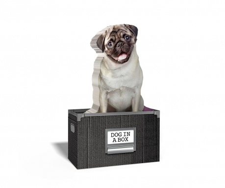 Bloc notite adezive Dog in a Box