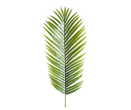 Dekoracija Mini Palm