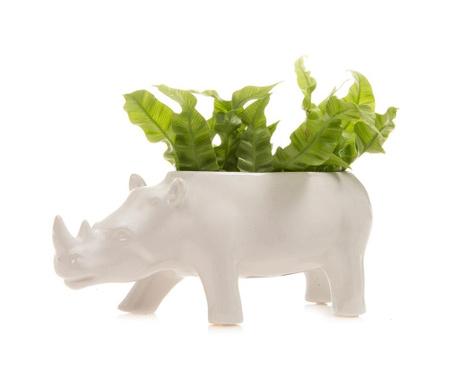 Ghiveci Rhino White