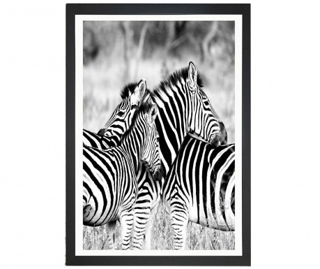Tablou Brighton Zebras 24x29 cm