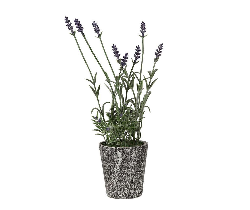 Lavendel Művirág virágcserépben