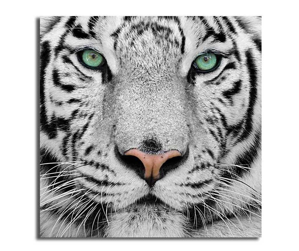 Slika Tiger 45x45 cm