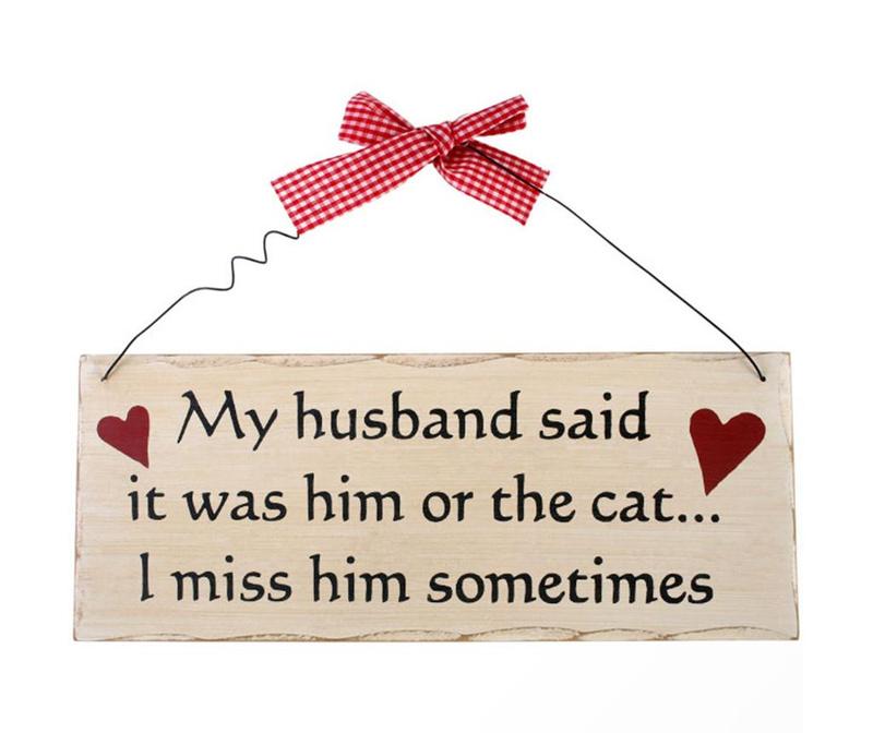 Zidni ukras Him Or The Cat