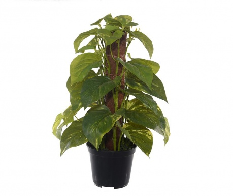 Planta artificiala in ghiveci Mini Pothos