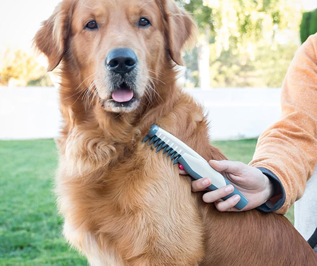 Električni glavnik za pse Romy
