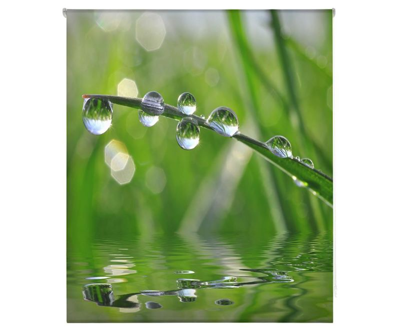Rolo zavesa Morning Dew 150x180 cm