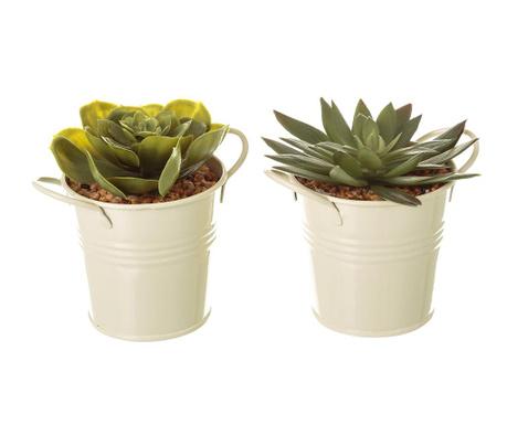 Zestaw 2 sztucznych roślin w doniczce Suculent