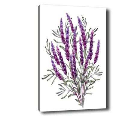 Obraz Lavender