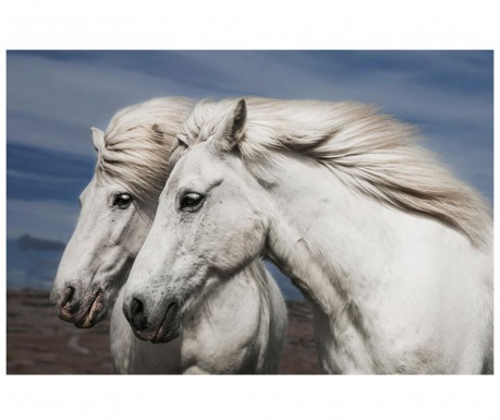 Slika Horses