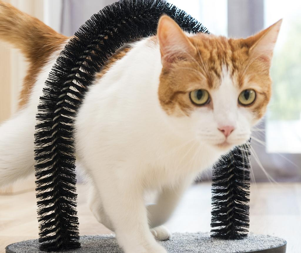 Kartáč pro kočky InnovaGoods Scratcher