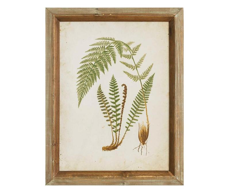 Fern Leaf Left Kép 43x55 cm