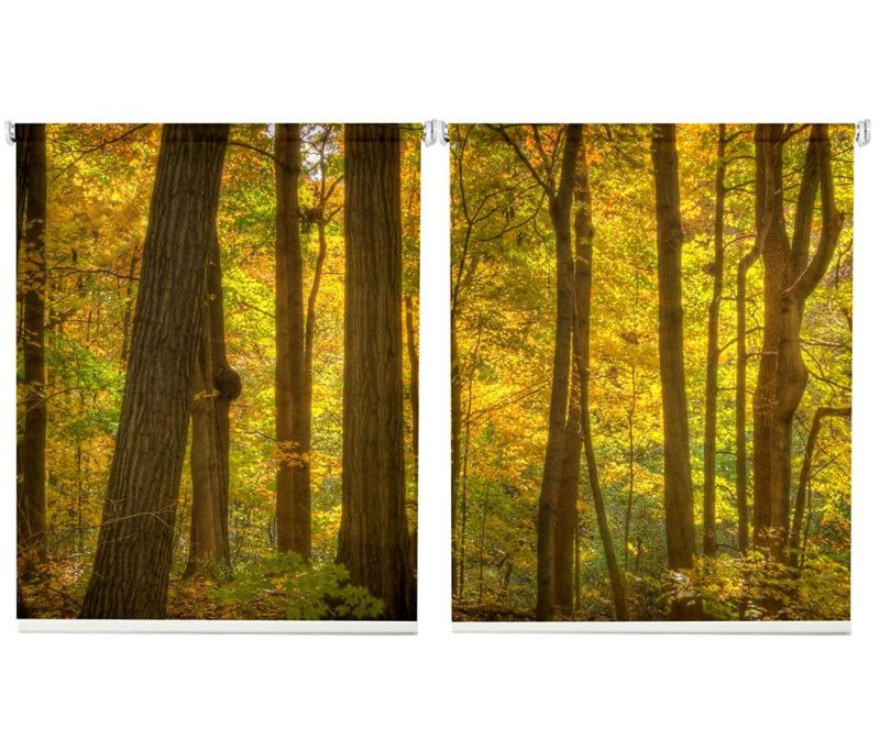 Set 2 rolo zaves Forest 100x200 cm