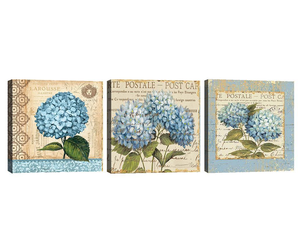 Set 3 slike Hydrangea 30x30 cm