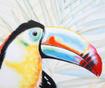 Tablou Toucan 90x120 cm