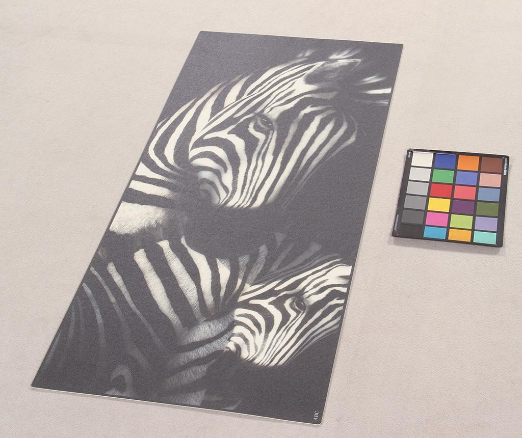 Linoleum Vista Zebra 50x120 cm