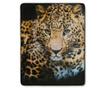 Pokrivač Leopard 130x160 cm