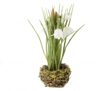 Τεχνητό λουλούδι Apollo