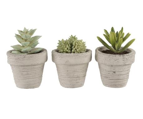 Zestaw 3 sztucznych roślin w doniczce Succulent