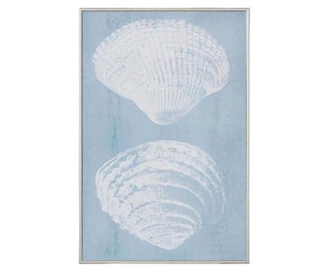 Tablou Bivalvia 30x45 cm