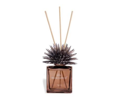 Pokojový parfémový difuzér a tyčinky Riccio Bronze Terra di Capri 100 ml