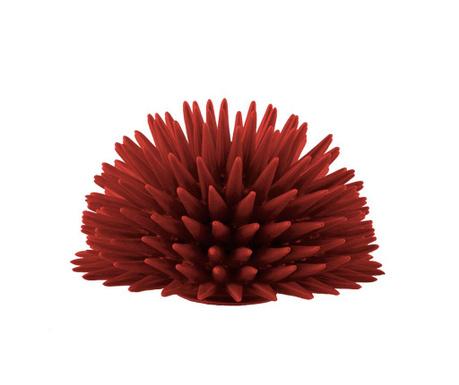 Dekorace Riccio Coral