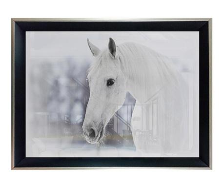 Obraz White Horse