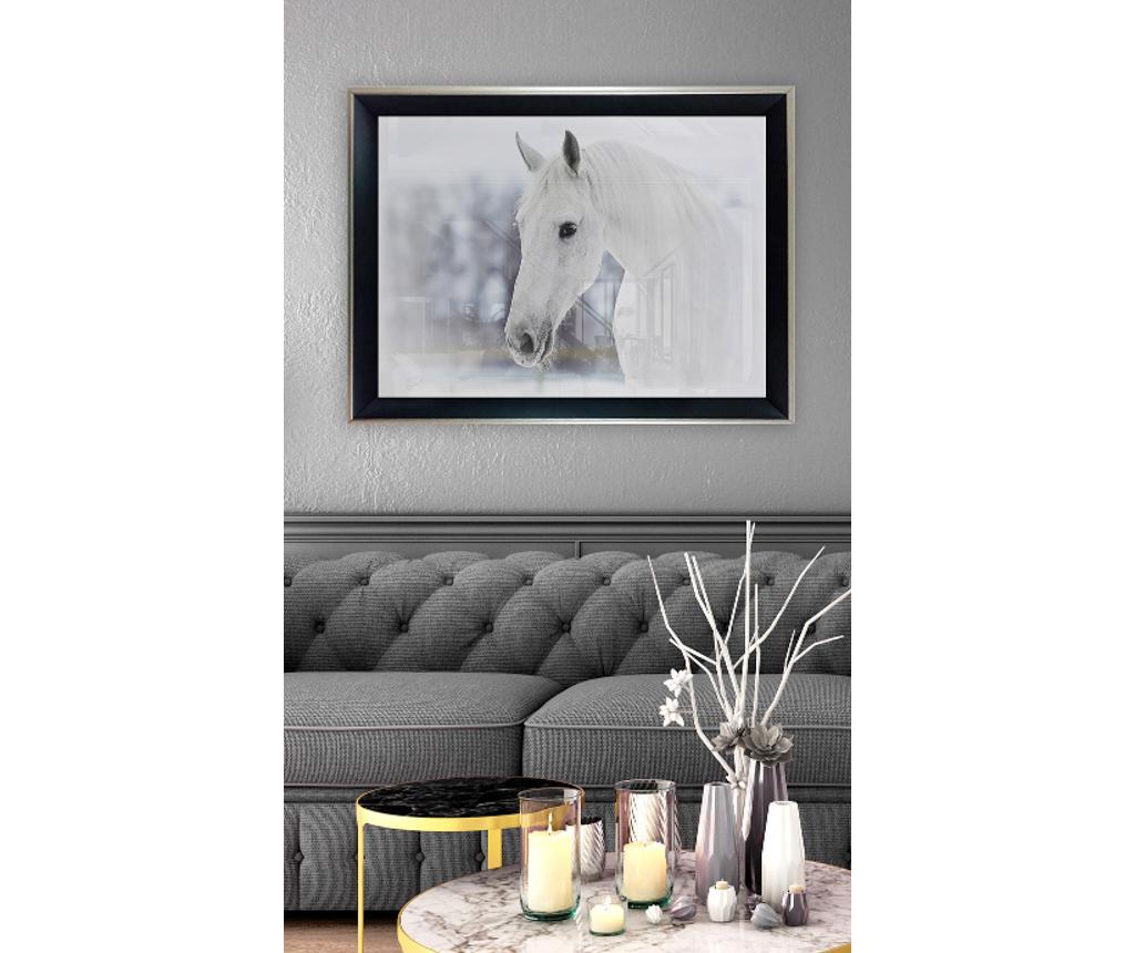 Obraz White Horse 45x65 cm