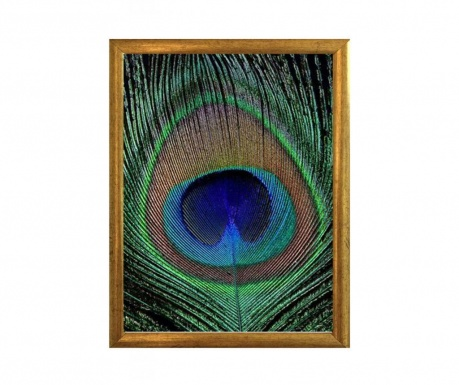 Peacock Kép 23x33 cm