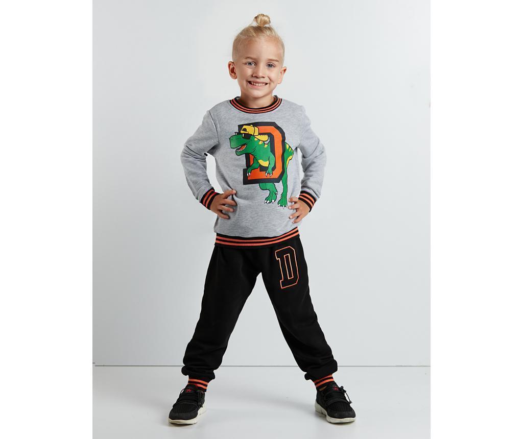Set bluza si pantaloni Dino D 4 ani