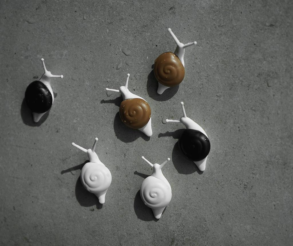 Snail 6 db mágnes