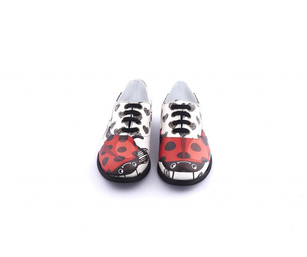 Ženske cipele 38