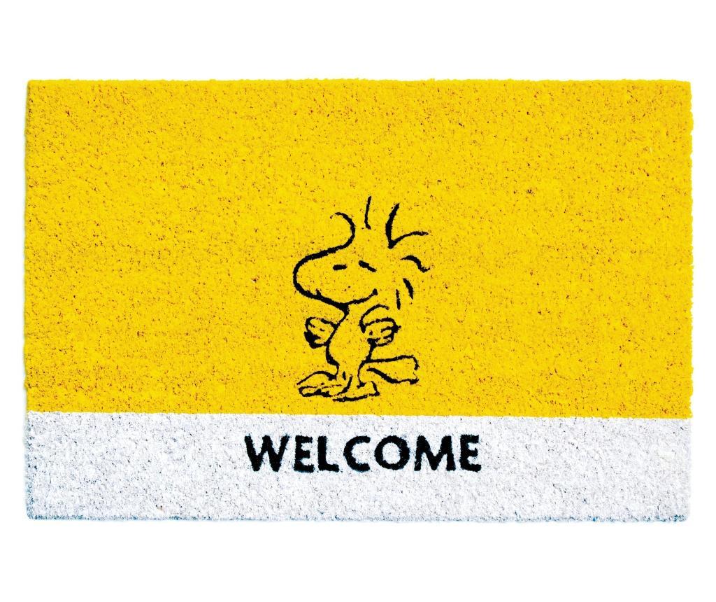 Predpražnik Peanuts 40x60 cm