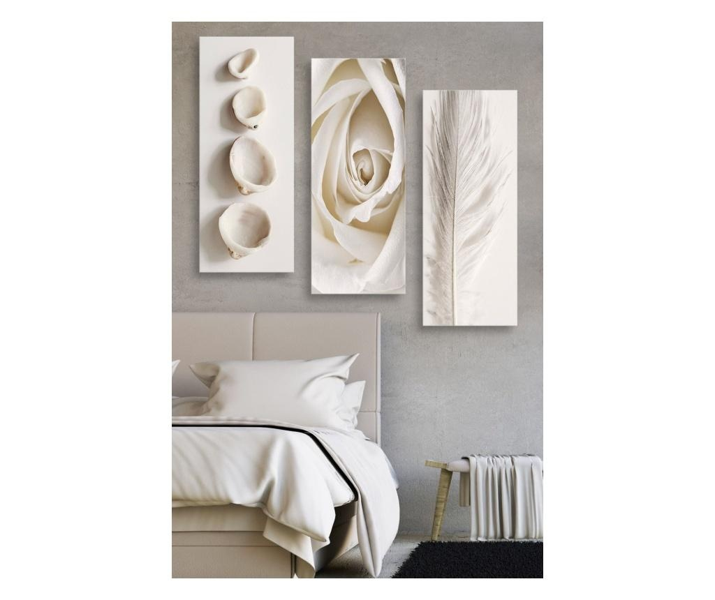 Set 3 tablouri Rose, Shells & Feather 20x50 cm